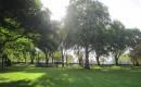 Temple Inn Garden